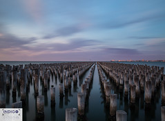 0J4A1316 (Indigo Photography) Tags: sunrise colours melbourne pier princesspier portphillipbay travel international worldcities cities ilovemelbourne visitmelborne