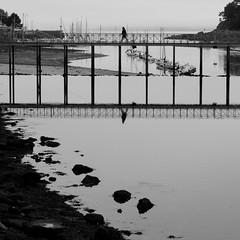 Entre deux eaux (cactus2016) Tags: douarnenez noiretblanc reflets blackandwhite reflection bridge pont humaningeometry technique thèmes