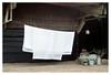 Laundry day (leo.roos) Tags: laundry was sheets lakens campingreggevallei denham a7s m42 pentaconauto5018multicoating meyeroreston5018 darosa leoroos monday wasdag maandag
