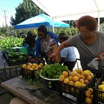 "Fremont's Free Farmers Market <a style=""margin-left:10px; font-size:0.8em;"" href=""http://www.flickr.com/photos/61961974@N03/36726798773/"" target=""_blank"">@flickr</a>"