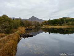 Ballynahinch (Nelleke C) Tags: 2016 ballynahinch connemara countygalway holiday ierland ireland landscape landschap railway river rivier vakantie
