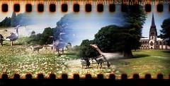 Clumber Park (pho-Tony) Tags: nationaltrust blendercam overlap mdf laser cut lasercut lasercutting accessspacesheffield access space sheffield hack homemade diy homemadecamera experiment distorsion blend merge lofi 35mm