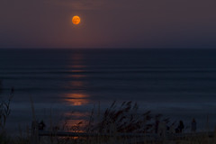 Harvest Moon Rise (brucetopher) Tags: harvest moon harvestmoon fullmoon full red orange bloodred water ocean sea blue waves wave breakers swells swell groundswell moonrise rise rising horizon pink bloodorange watchers people photo photograph onlookers travel dune dunes beachgrass longexposure le light moonlight grass animal sky reflection silhouette pillar moonpillar golden atlantic