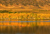 Morning Row (mclcbooks) Tags: morning reflections trees fall autumn yellow boat scull sculling rowing row chatfieldstatepark lakechatfield colorado landscape