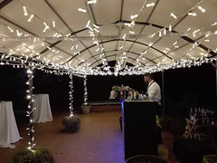 """Wedding Fairy lights • <a style=""""font-size:0.8em;"""" href=""""http://www.flickr.com/photos/98039861@N02/37064109014/"""" target=""""_blank"""">View on Flickr</a>"""