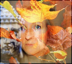 IN THE AUTUMN OF MY MIND (Poppy ♥ Cocqué ♫) Tags: ap poppy poppycocqué soundtrack poem prose poetry intheautumnofmymind theroad havasi ralphwaldoemerson autumn autumnal fall self selfie selfportrait portrait portraiture art artwork surreal surrealistic surrealism picture photography compilation spiritual enlightenment garden mygarden tuliptree outside outdoors rain raindrops golden auburn russet liriodendron autumnqueen spirit spiritofautumn sprite fairyqueen titania