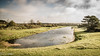 20171014-DSC_0680 (M van Oosterhout) Tags: amsterdamse waterleiding duine natuur nature flora fauna landschap landscape dutch holland amsterdam nederland netherlands animals