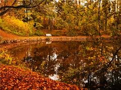 Autumn in the Eutin Castle Park (Ostseetroll) Tags: deu deutschland eutin geo:lat=5413554380 geo:lon=1062064460 geotagged schleswigholstein herbstfarben schlosspark herbst autumn autumncolours autumnleafcolours wasser water see lake spiegelungen reflections