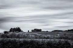Farmland (citrusjig) Tags: fuji xe1 tamronspadaptall23580mmf283801a blackandwhite toned