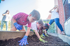 Week in Photos - 57 (Ole Miss - University of Mississippi) Tags: 2017 skb3162 willieprice daycare garden kids children seeds plant planting sowing farm mississippifarmtoschoolnetwork