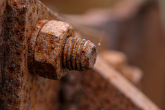 Rusty Bolt (andrewturnbull3) Tags: bolt nut thread rust rusty closeup close up upclose macro canon 80d eos 100mm texture