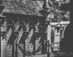 (C-47) Tags: bw mono monochrome noiretblanc noirblanc ombres shadows flickr light daylight stone stonework bestofparis paris feel feelings flower flowers france focus blackwhite blackandwhite composition art artistic artistique artists architecture architectural pèrelachaisecemetery cemetery graves graveyard amateur ambiance primelense vintage helios442