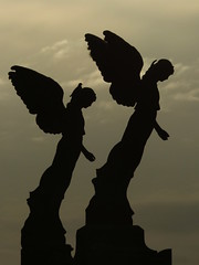 Living spirit (♥ expressing emotions ♥) Tags: areco cementerio cemetery sculpture esculturas birds aves contraste contrast cielo sky shadows