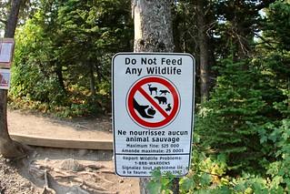 Waterton: Do Not Feed Any Wildlife