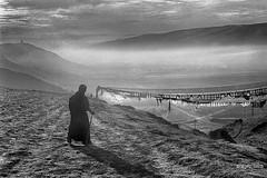 Tibetans (siggi.martin) Tags: asien asia tibet osttibet easterntibet china sichuan mann man männer men morgen morning dunst haze gehen walk pilger pilgrim gebetsfahnen prayerflags hügel hill schatten shadow schwarzwweis blackandwhite filmkorn filmgrain orgenstimmung morningmood morningatmosphere himmel sky wolke cloud wolken clouds gegenlicht backlight