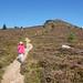 2017-08-26 09-09 Schottland 541 Bennachie, Mither Tap Trail