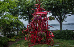 2017 - Halifax - The Bicycle Thief (Ted's photos - For Me & You) Tags: 2017 canada cropped halifax nikon nikond750 nikonfx novascotia tedmcgrath tedsphotos vignetting thebicyclethief art publicart sculpture bicycles bicycleart red redrule park cans2s thebicyclethiefhalifax