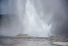 Daisy Geyser (dan.weisz) Tags: yellowstone thermal uppergeyserbasin daisygeyser eruption geyser