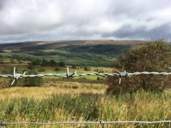 (staceygallagher2) Tags: photography nature scenic field photoshoot ariana mountain
