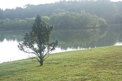 august 13 2017 (avflinsch) Tags: ifttt 500px lake spring tree summer fall history seasons