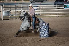 GY8A5124.jpg (BP3811) Tags: 8seconds 2017 allen arizona bareback barrel bell belt bit boots boy breakaway bronc buck buckle bull bulldogger bustin busting calf chase clown corral cow cowboys cowgirl days fall gate hat hazer header healer helmet horns horse jump kids lariat leap mutton october queen racing reins rex riders riding rodeo rope roping run saddle sheep spurs steer team teamwork tie twist wilcox wrestling