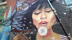 Make a wish (Tomitheos) Tags: streetart wallmural wish dandelion tomitheosphotography urbantoronto artwork graffiti