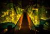 A bridge to dinner (Stuck in Customs) Tags: newzealand queenstown workshop bridge wild earth cromwell river night treyratcliff stuckincustoms stuckincustomscom hdr hdrtutorial hdrphotography hdrphoto aurorahdr x1d hasselblad