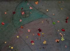 autumn house in chalk (dotintime) Tags: autumn fall season rain dark wet house chalk drawing primary confetti color spot sprinkle dot dotintime meganlane