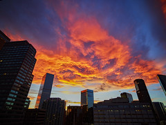 Sunday night sunset did not disappoint ! (Denverphotoscapes) Tags: denver colorado grantstreet architecture architectural structures building edifice edifices commercialbuilding skyscraper residentialbuilding misccityview lightning cloudporn clouds captureone xf iq3100 phaseone sunset usa