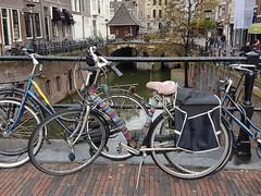 gebreide dekking (katy1279) Tags: bicyclehollandknittedcoverknittinguniqueunusualbespokecyclingheaven