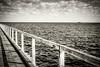 Edge of the world (Shutterbytes by Michele Hamilton) Tags: australia semaphore september2017 southaustralia boat clouds coast converginglines jetty ocean sea shadow sky horizon edge bw monochrome