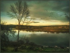 October on the Oka river. (odinvadim) Tags: landscape iphoneonly evening iphoneart globetravel iphoneography mytravelgram painterlymobileart sunset iphone snapseed artist instapickskyart ourtravelgram travel textured forest textures editmaster painterly