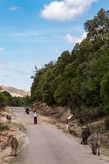 Sardinien Tag 6 (20)