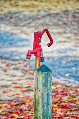 locked (avflinsch) Tags: ifttt 500px autumn park color water early morning pump