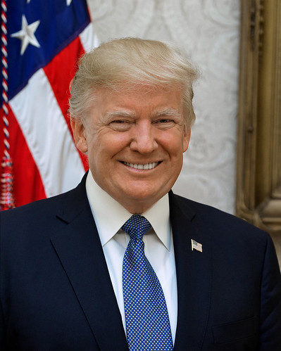 From flickr.com: President Donald J Trump official portrait {MID-190092}