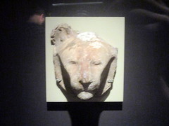 Sculptor's Model of a Lion's Head (Autistic Reality) Tags: politicallife religiouslife religion politics life interior inside indoors smithsonian smithsonianinstitution washington washingtondc districtofcolumbia district columbia dmv dc building structure architecture us usa unitedstates unitedstatesofamerica america cityofwashington institution museum si arthurmsacklergallery arthurmsackler gallery sacklergallery sackler thesackler ancient egypt divinity felines cats ancientegypt divinefelines catsofancientegypt cat kitty fluffy cute divine feline animal