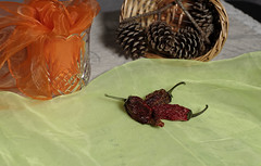 Jalapeno peppers (N.the.Kudzu) Tags: home tabletop jalapeno peppers pine cones scarf pentaxk3 dxoopticspro11