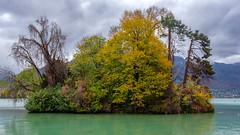 Île aux cygnes (FotoCorn) Tags: frankrijk annecy france lacdannecy autumn fall natuur nature