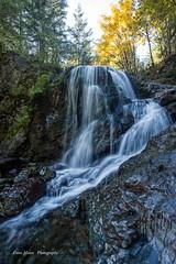 Water Fall (photobydave@gmail.com) Tags: waterfall vancouverisland britishcolumbia pacificnorthwest forest landscape gordonmain gordonriver