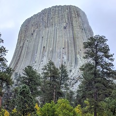 Wyoming, Devil's Tower IMG_20171002_205124_369 (ianw1951) Tags: usa wyoming columnarjointing phonolite igneousrocks geology