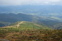 DSCF4642 (Jakub Lewandowski) Tags: beskidy babia góra mountains poland polska jesień automn