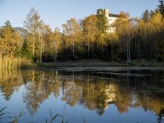 PA160159 (turbok) Tags: herbst kirchenundschlösser landschaft schlosstrautenfels spiegelung stimmungen wasser c kurt krimberger