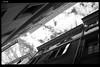 IMG_4746 (anto-logic) Tags: tetti palazzi verona italia cielo nuvole roofs buildings strade streets sky clouds italy sole ombra luce luminoso chiaro bello caldo promenade strada strret people free freedom sun shadows light clear daily nice warm beautiful lovely pretty colors colorful love outdoor streetshots inquadratura wonderful fabulous magnificent superb hot naturallight skin lighting framing crop charming puntodivista profonditàdicampo pov dof bokeh focus pointofview depthoffield postproduzione postproduction lightroom filtro filter effetti effects photoshop alienskin eos canon