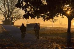 Sunburst (Clayton Perry Photoworks) Tags: vancouver bc canada fall autumn explorebc explorecanada sunrise leaves trees colour stanleypark silhouette people hallelujahpoint seawall