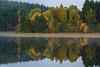 Reflecting on Pityoulish (Geoff France) Tags: loch lochpityoulish landscape scottishlandscape cairngorms cairngormsnationalpark mere lake scottishloch autumn reflection