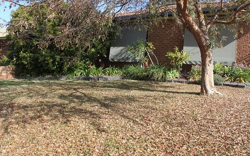 208 Farnell St, Forbes NSW 2871