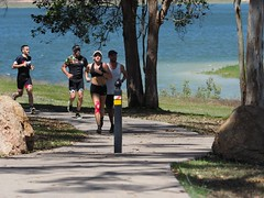 "The Avanti Plus Long and Short Course Duathlon-Lake Tinaroo • <a style=""font-size:0.8em;"" href=""http://www.flickr.com/photos/146187037@N03/36894422133/"" target=""_blank"">View on Flickr</a>"