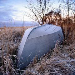 Iron Man - Velvia 100 exp* (magnus.joensson) Tags: sweden swedish skåne winter coast january hasselblad 500cm zeiss distagon 50mm cf fle fuji velvia 50 e6 6x6 exp exp2007