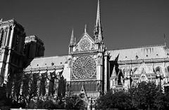 B&W South View of Notre Dame de Paris (dominotic) Tags: paris france notredamedeparis ourladyofparis notredame gothiccathedral blackandwhite roof history architecture bw cathedral notredamesouthview window fourtharrondissement îledelacité icon catholicchurch circle