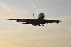 QF0001 SYD-DXB-LHR (A380spotter) Tags: wake shockwave condensation moisture water vapour silhouette arrival landing finals shortfinals belly airbus a380 800 msn0015 vhoqb hudsonfysh qantasairways spiritofaustralia qfa qf qf0001 syddxblhr runway27r 27r london heathrow egll lhr